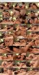 Sophia Jade, Taylor Vixen - Lesbian (2019) HD 1080p